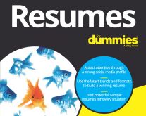 Resumes for Dummies, 8th Launch + Contributor Recognition